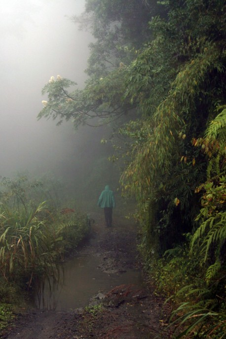 Landscape Trail Taiwan.JPG