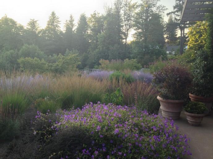 Plant consultation by Daniel Hinkley