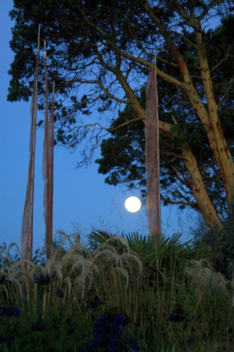 Moon, Prayer Flags, Windcliff.JPG
