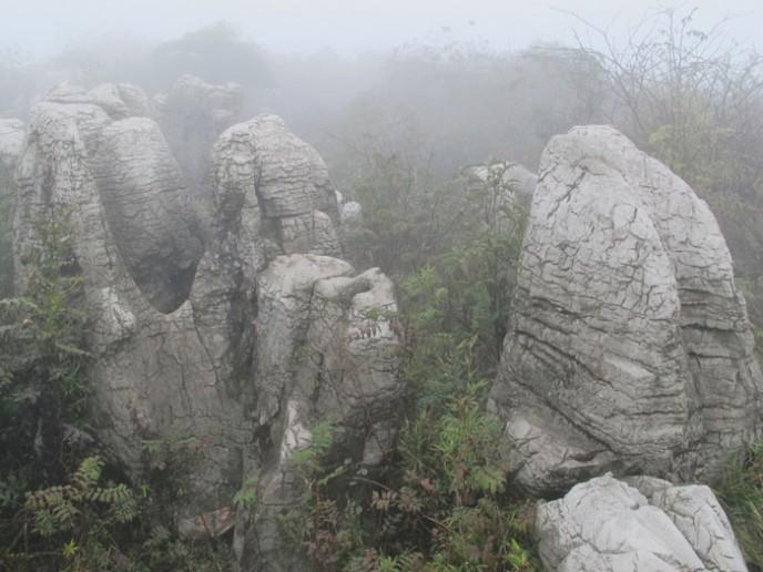 Stone-Forest-Wumeng-Dan-Hinkley