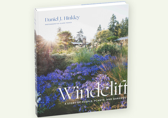 Windcliff book cover